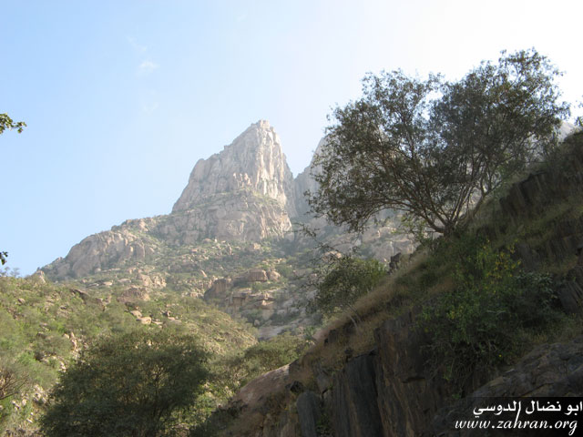 مناظر من جبل شدا التابع لمحافظة الباحه IMG_0257.jpg