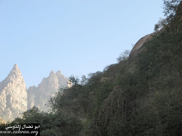 مناظر من جبل شدا التابع لمحافظة الباحه IMG_0272.jpg